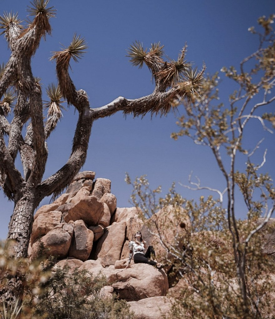 Monica under blue skies and surrounded by Joshua Trees and large boulders.
