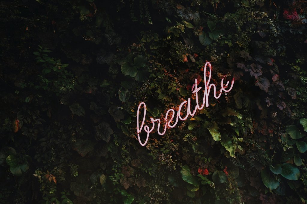 A pink sign in the leaves reading, Breathe.