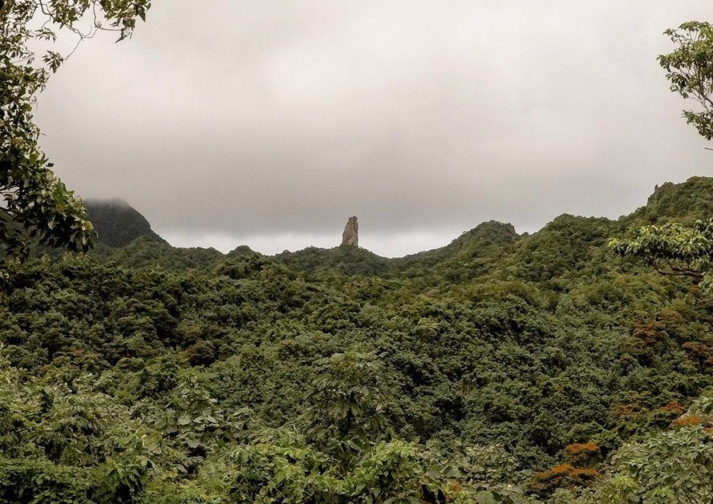 Large pointy rock called the Needle, to hike to through the jungle.