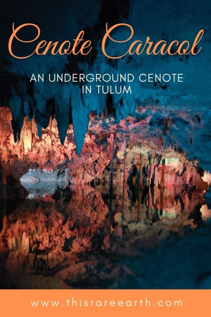 Cenote Caracol: An Underground Cenote in Tulum, full of mystery!  Plan your visit here.