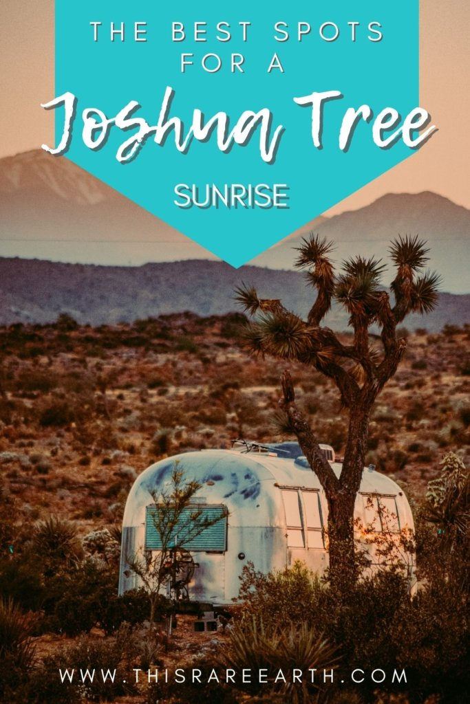 The Best Spots for a Joshua Tree Sunrise Pin