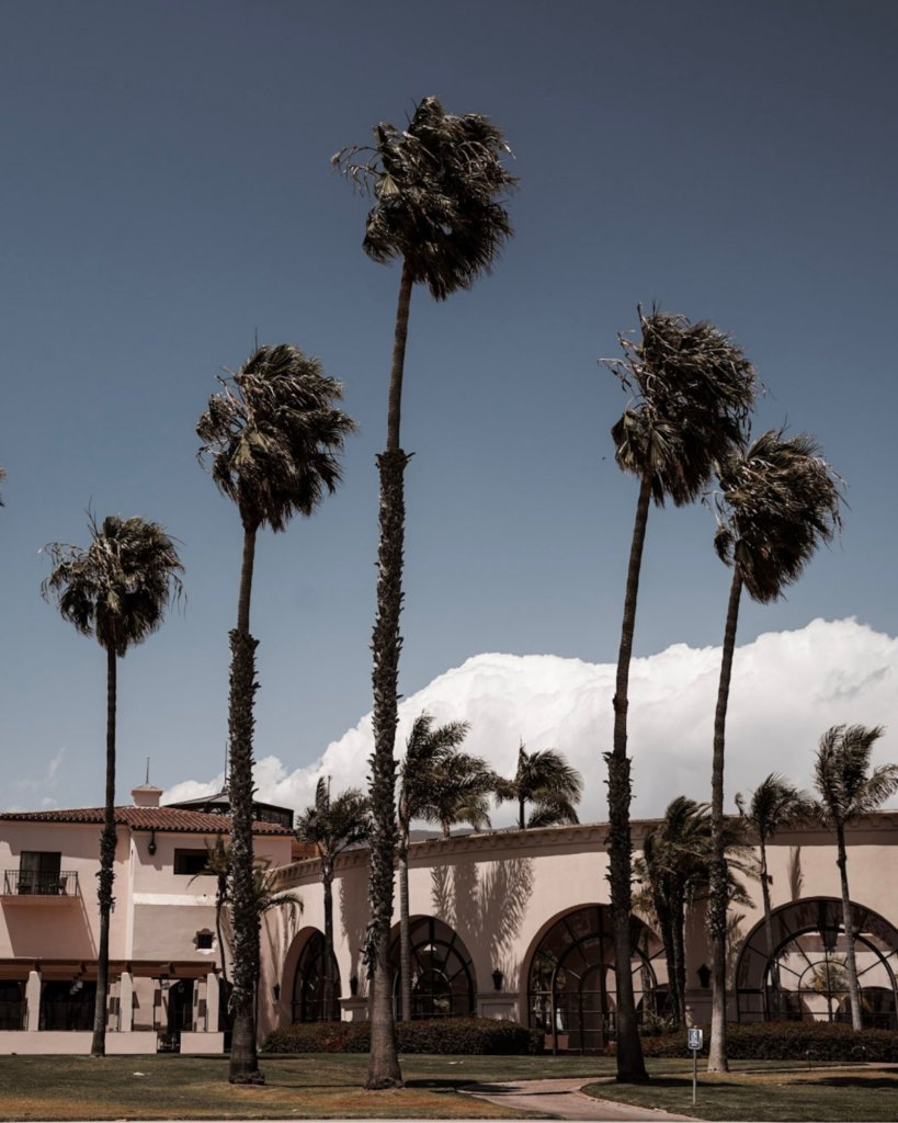 Palm trees stacked in front of Spanish Colonial architecture, on a Santa Barbara Day Trip.