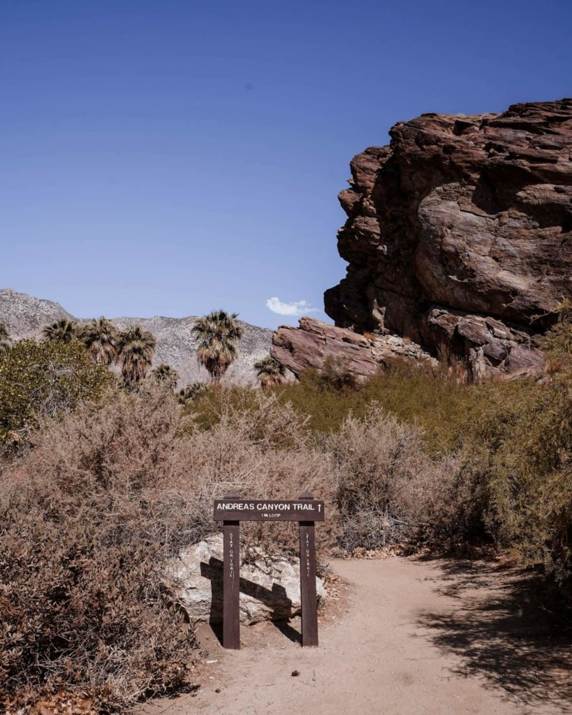 The entrance to the Andreas Canyon Trail Hike.
