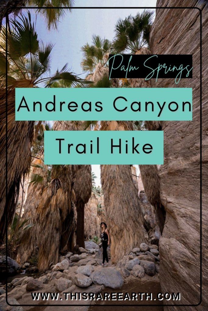 The Andreas Canyon Trail Hike - Hiking Andreas Canyon in Palm Springs.
