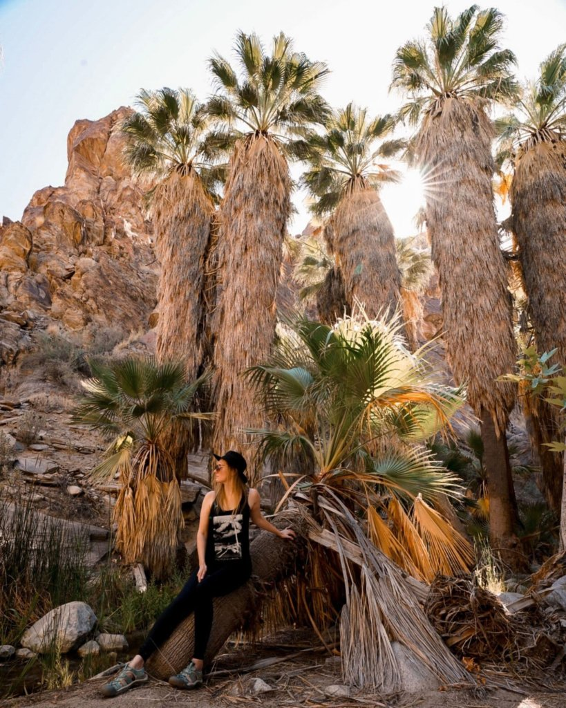 Monica on the Andreas Canyon Trail Hike - the lush green Andreas Canyon in Palm Springs.