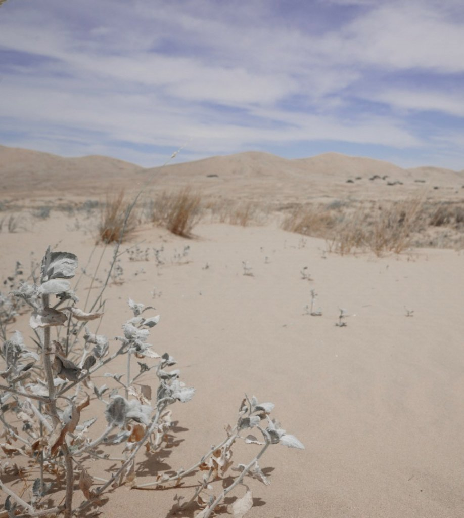 A view of the Kelso Dunes in the Mojave National Preserve from a distance.