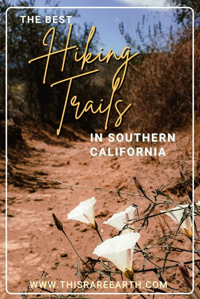 The Best Hiking Trails in Southern California