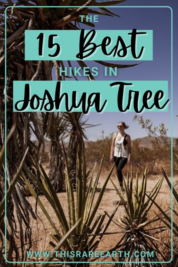 The 15 Best Hikes in Joshua Tree National Park.