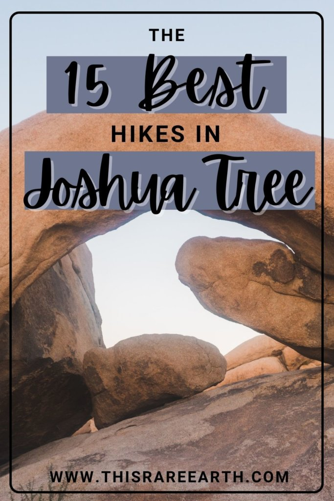 The 15 Best Hikes in Joshua Tree pin.